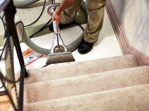 Carpet Cleaning Company in Hemel Hempstead