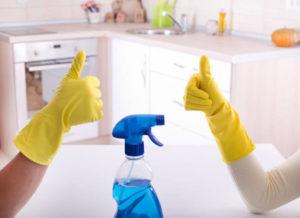 Mega Cleaning pros